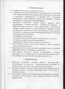 кол_дог 001