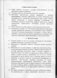 кол_дог 002